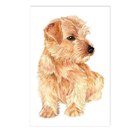 Norfolk Terrier Postcards (Package of 8)