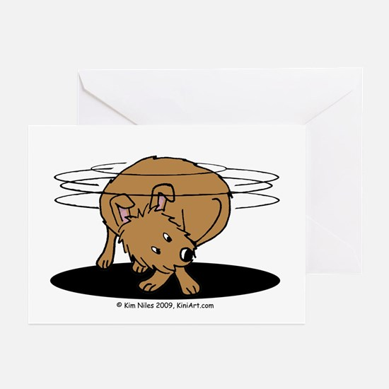 Spin Master Greeting Cards (Pk of 20)