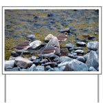 Killdeer Yard Sign