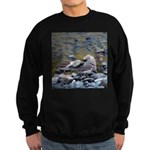 Killdeer Sweatshirt (dark)