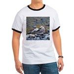 Killdeer Ringer T
