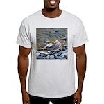 Killdeer Light T-Shirt
