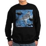 Killdeer (Single) Sweatshirt (dark)