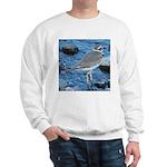 Killdeer (Single) Sweatshirt