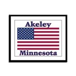 Akeley US Flag Framed Panel Print