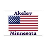 Akeley US Flag Mini Poster Print