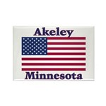 Akeley US Flag Rectangle Magnet (10 pack)