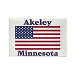 Akeley US Flag Rectangle Magnet (100 pack)