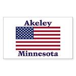 Akeley US Flag Rectangle Sticker 10 pk)