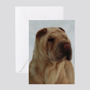 Chinese Shar-Pei Head Study - Greeting Card