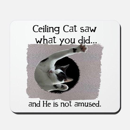 Ceiling Cat Mousepad
