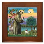 StFran./Chihuahua (LH) Framed Tile