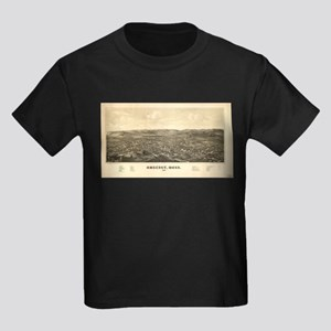 Vintage Pictorial Map of Amherst MA (1886) T-Shirt