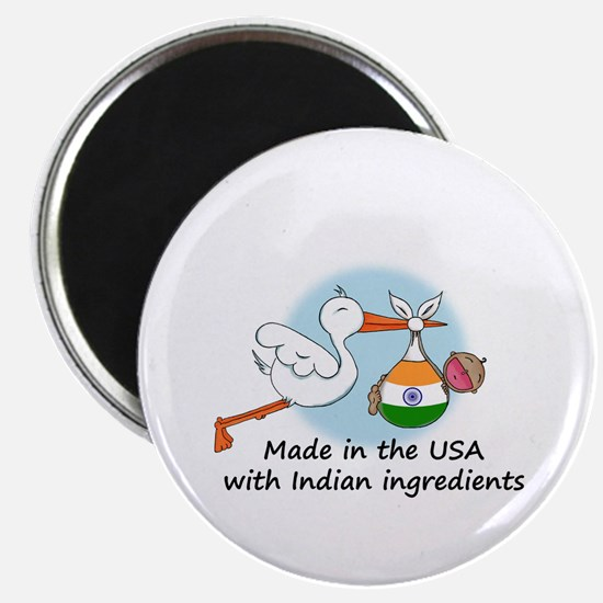 Stork Baby India USA Magnet