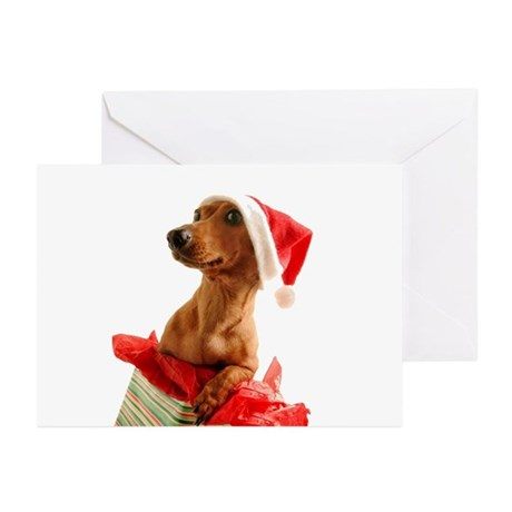 Present Greeting Cards (Pk of 20)