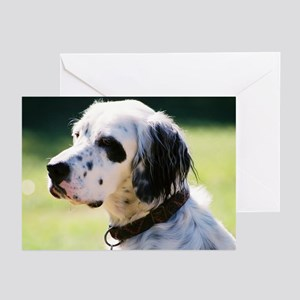 Lucky Greeting Cards (Pk of 10)