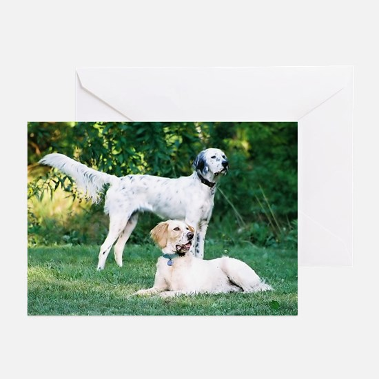 Lucky & Rembrandt Greeting Cards (Pk of 10)