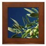 California Olives Framed Tile