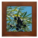 Wine Country Olives Framed Tile
