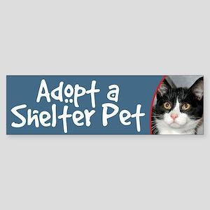 Adopt a Shelter Pet bumper sticker cat