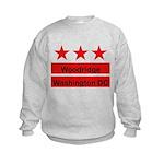 Woodridge - D.C . Flag Inspir Kids Sweatshirt