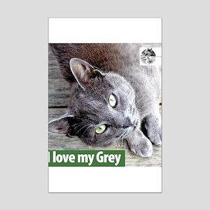 Grey Cat Mini Poster Print