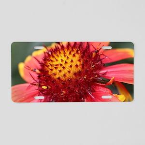 Blanket flower Aluminum License Plate