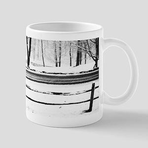 Winter Road and Pond Mug