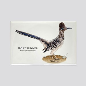 Roadrunner Rectangle Magnet