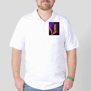Kansas Wheat Golf Shirt