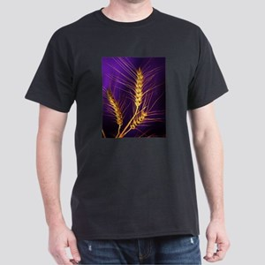 Kansas Wheat Dark T-Shirt