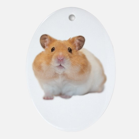 Cute Hamster Oval Ornament