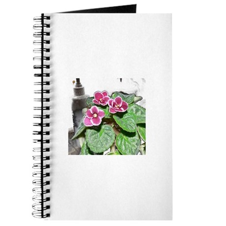 African Violet in the Sunshine Journal
