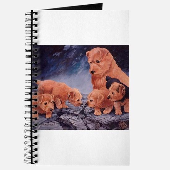 Norfolk Terriers Journal