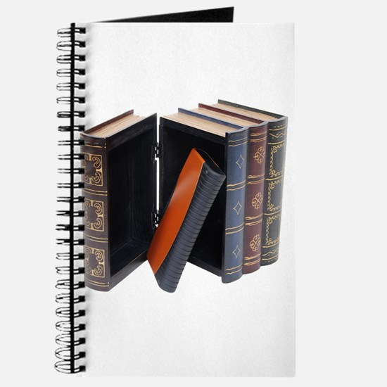 Concealed Hard Drive Journal