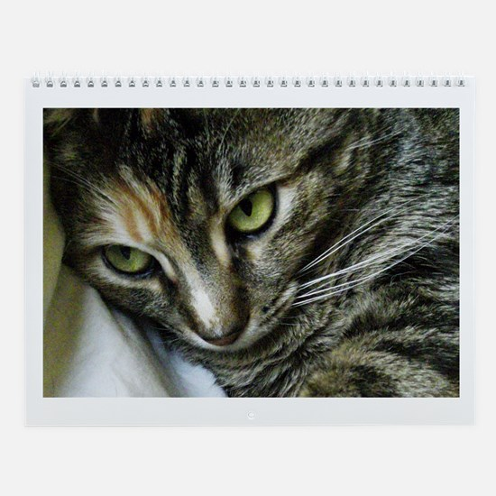 Zen Kitty Wall Calendar