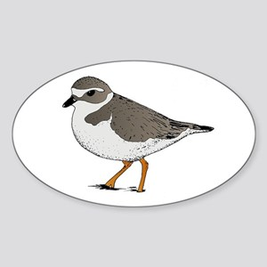 Piping Plover Oval Sticker