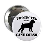 Protected by my Cane Corso 2.25