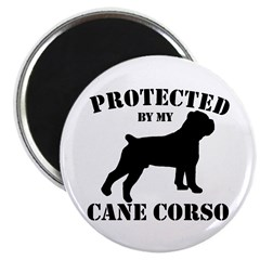 Protected by my Cane Corso Magnet