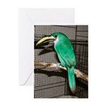 Emerald Toucanet Greeting Card (blank inside)