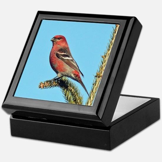 Pine Grosbeaks Keepsake Box