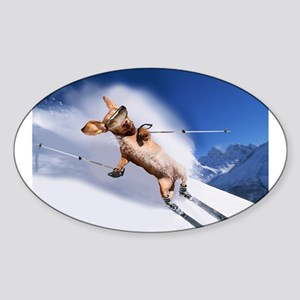 Skiing Oval Sticker