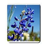 Texas Bluebonnet Mousepad by Penny Mikeman photos