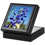 Bluebonnet Keepsake Box by Penny Mikeman Photos