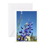 Bluebonnet Greeting Cards (Pk of 10) by Penny