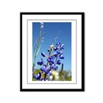 Bluebonne Framed Panel Print by Penny Mikeman