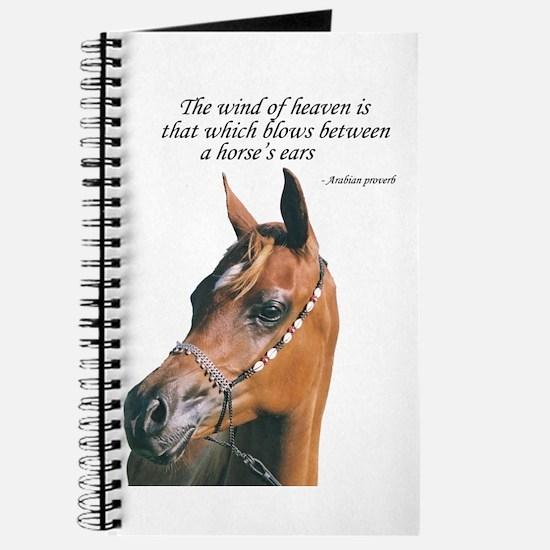 Funny Arabian Journal