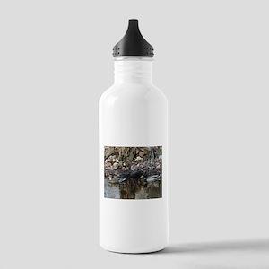Mallard Couple Stainless Water Bottle 1.0L