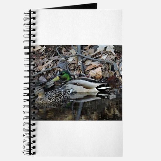 Duck Couple Journal