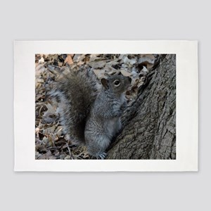 Squirrel 2 5'x7'Area Rug